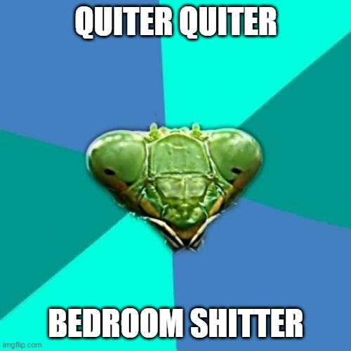 Crazy Girlfriend Praying Mantis Meme | QUITER QUITER BEDROOM SHITTER | image tagged in memes,crazy girlfriend praying mantis | made w/ Imgflip meme maker