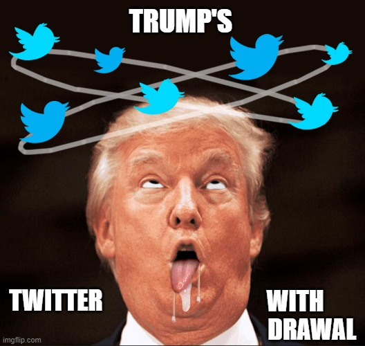 Trump's Twitter Withdrawal |  TRUMP'S; WITH        DRAWAL; TWITTER | image tagged in donald trump you're fired,twitter,withdrawal | made w/ Imgflip meme maker