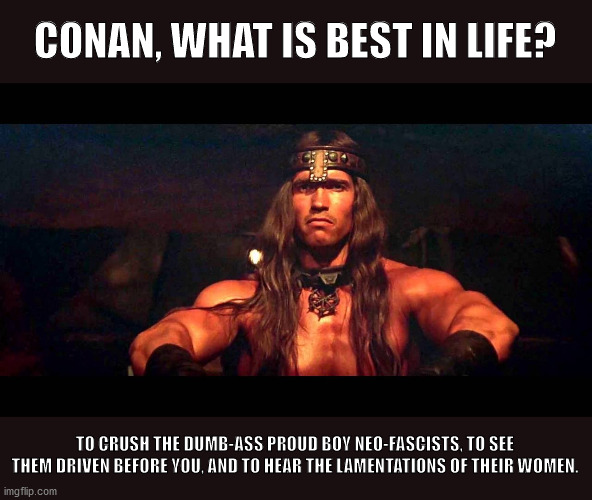 Conan the decent Republican |  CONAN, WHAT IS BEST IN LIFE? TO CRUSH THE DUMB-ASS PROUD BOY NEO-FASCISTS, TO SEE THEM DRIVEN BEFORE YOU, AND TO HEAR THE LAMENTATIONS OF THEIR WOMEN. | image tagged in arnold schwarzenegger,conan the barbarian,trump,proud boys,neo-nazis,neo-fascists | made w/ Imgflip meme maker