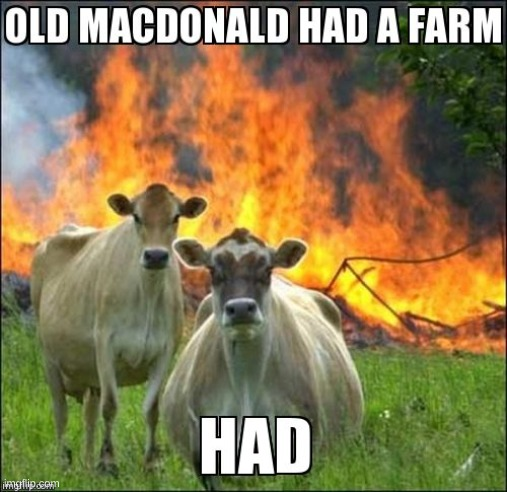 Old McDonald HAD a Farm | image tagged in oh wow are you actually reading these tags | made w/ Imgflip meme maker