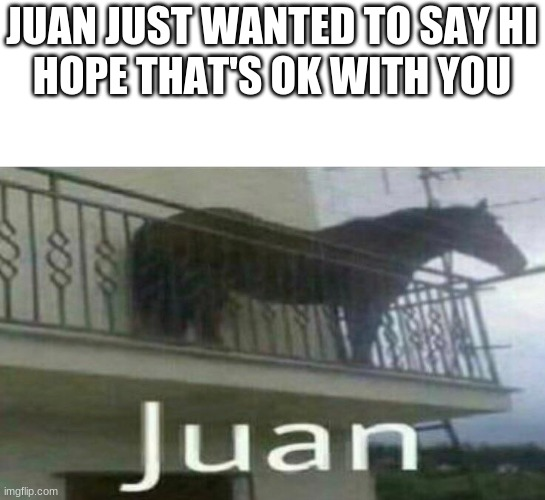 juan |  JUAN JUST WANTED TO SAY HI    HOPE THAT'S OK WITH YOU | image tagged in funny,funny memes,juan,lol | made w/ Imgflip meme maker