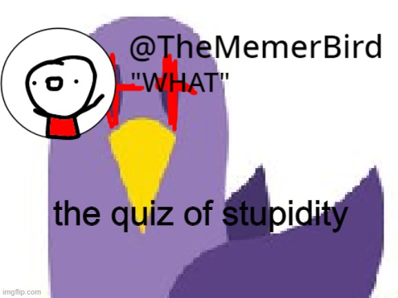 the quiz of stupidity in the comments |  the quiz of stupidity | image tagged in thememerbird announcement template | made w/ Imgflip meme maker