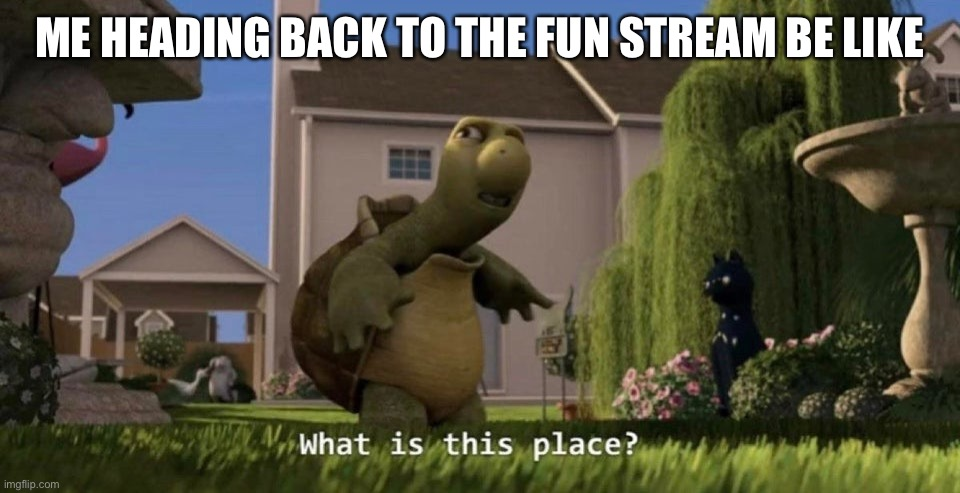 What is this place |  ME HEADING BACK TO THE FUN STREAM BE LIKE | image tagged in what is this place,memes | made w/ Imgflip meme maker