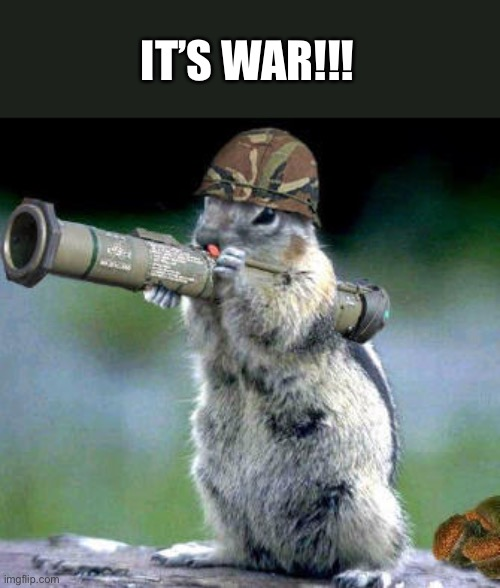 Bazooka Squirrel Meme | IT'S WAR!!! | image tagged in memes,bazooka squirrel | made w/ Imgflip meme maker