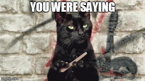 when someone insults u lol XD | YOU WERE SAYING | image tagged in animals,cats,reactions,funny | made w/ Imgflip meme maker