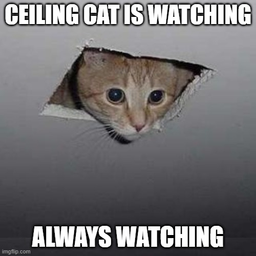 Ceiling Cat Meme |  CEILING CAT IS WATCHING; ALWAYS WATCHING | image tagged in memes,ceiling cat | made w/ Imgflip meme maker