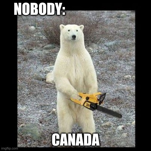 Canada |  NOBODY:; CANADA | image tagged in memes,chainsaw bear | made w/ Imgflip meme maker