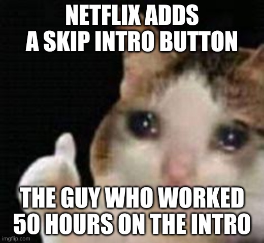Approved crying cat |  NETFLIX ADDS A SKIP INTRO BUTTON; THE GUY WHO WORKED 50 HOURS ON THE INTRO | image tagged in approved crying cat | made w/ Imgflip meme maker