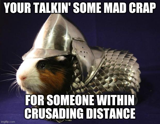 guinea pig |  YOUR TALKIN' SOME MAD CRAP; FOR SOMEONE WITHIN CRUSADING DISTANCE | image tagged in guinea pig,potato | made w/ Imgflip meme maker
