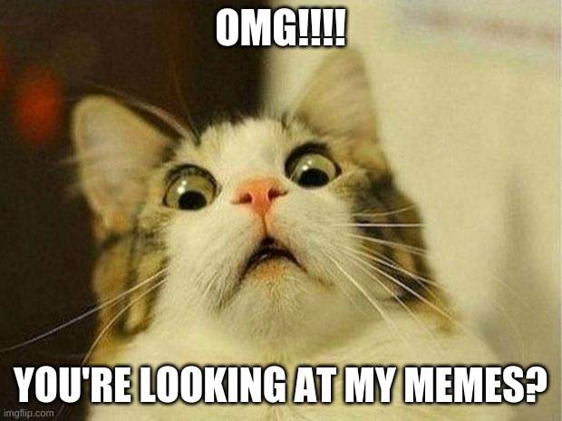 Scared Cat Meme |  OMG!!!! YOU'RE LOOKING AT MY MEMES? | image tagged in memes,scared cat | made w/ Imgflip meme maker