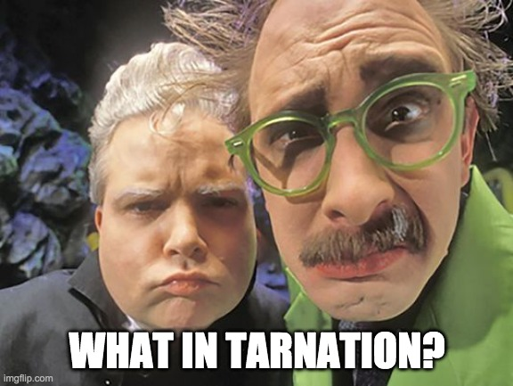 He's cracking up, Frank! |  WHAT IN TARNATION? | image tagged in mst3k - dr forrester - tv's frank,mst3k,dr forrester,tv's frank | made w/ Imgflip meme maker