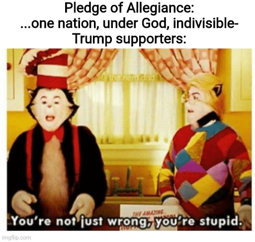 just a random first meme fueled by my braincells melting |  Pledge of Allegiance: ...one nation, under God, indivisible- Trump supporters: | image tagged in you're not just wrong your stupid,america,donald trump,potus,washington dc | made w/ Imgflip meme maker