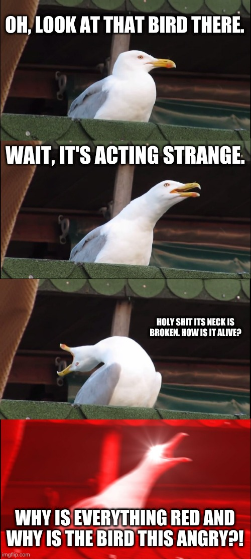 Inhaling Seagull Meme |  OH, LOOK AT THAT BIRD THERE. WAIT, IT'S ACTING STRANGE. HOLY SHIT ITS NECK IS BROKEN. HOW IS IT ALIVE? WHY IS EVERYTHING RED AND WHY IS THE BIRD THIS ANGRY?! | image tagged in memes,inhaling seagull | made w/ Imgflip meme maker