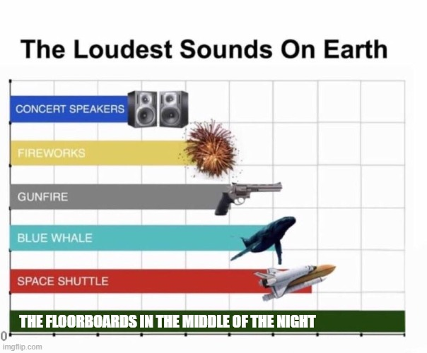 FloorBoards |  THE FLOORBOARDS IN THE MIDDLE OF THE NIGHT | image tagged in loudest things | made w/ Imgflip meme maker