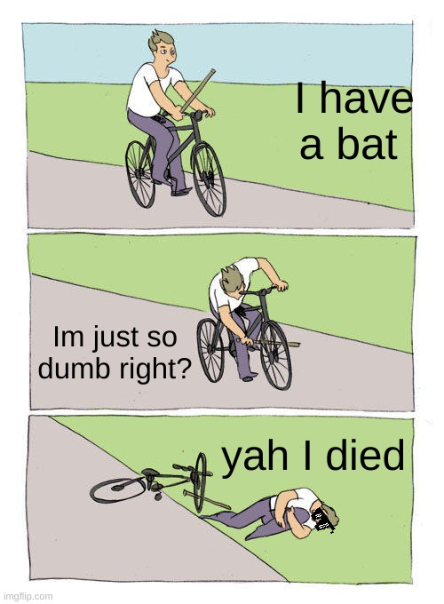 Stupid |  I have a bat; Im just so dumb right? yah I died | image tagged in memes,bike fall | made w/ Imgflip meme maker