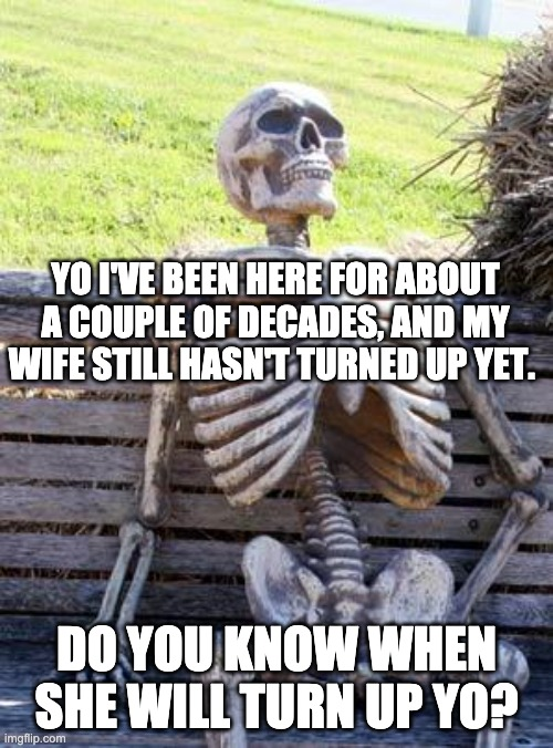 Waiting |  YO I'VE BEEN HERE FOR ABOUT A COUPLE OF DECADES, AND MY WIFE STILL HASN'T TURNED UP YET. DO YOU KNOW WHEN SHE WILL TURN UP YO? | image tagged in memes,waiting skeleton | made w/ Imgflip meme maker
