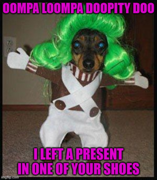 Oompa Loompa doopity DOO! |  OOMPA LOOMPA DOOPITY DOO; I LEFT A PRESENT IN ONE OF YOUR SHOES | image tagged in dog oompa loompa,dogs,animals,willy wonka | made w/ Imgflip meme maker