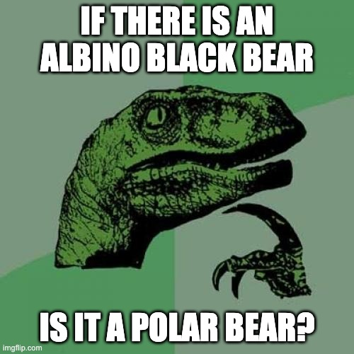 its an albino polar black bear |  IF THERE IS AN ALBINO BLACK BEAR; IS IT A POLAR BEAR? | image tagged in memes,philosoraptor | made w/ Imgflip meme maker