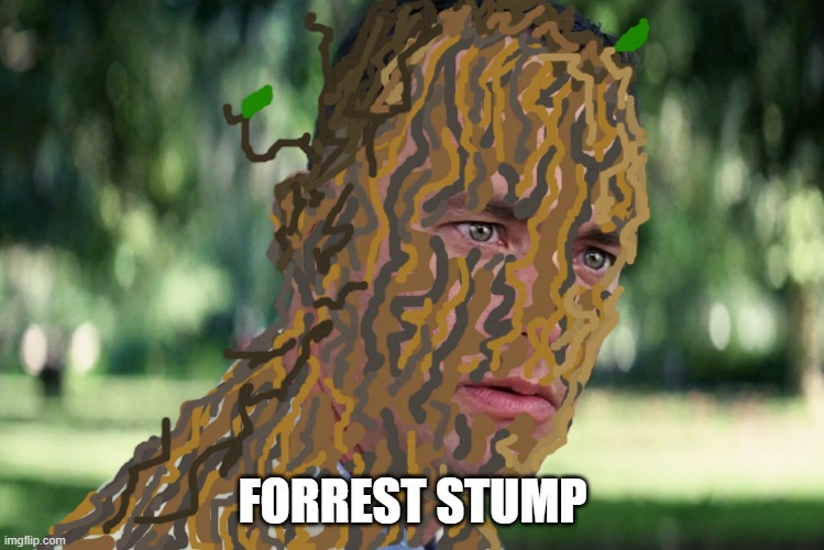 ? |  FORREST STUMP | image tagged in memes,and just like that | made w/ Imgflip meme maker