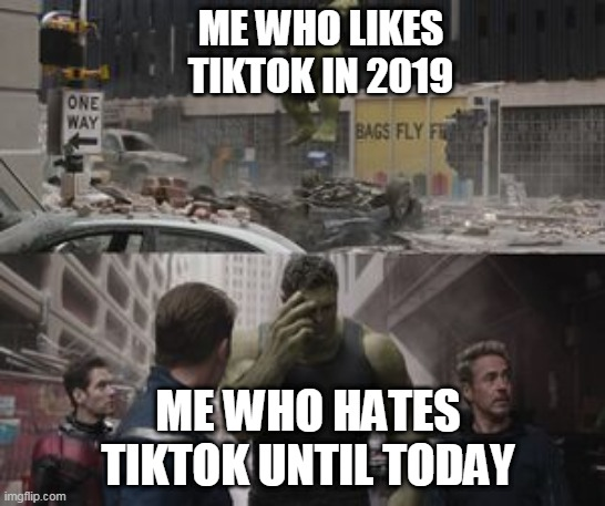 Oh god |  ME WHO LIKES TIKTOK IN 2019; ME WHO HATES TIKTOK UNTIL TODAY | image tagged in regretful hulk | made w/ Imgflip meme maker
