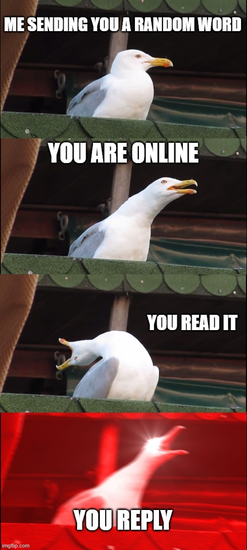 ooo |  ME SENDING YOU A RANDOM WORD; YOU ARE ONLINE; YOU READ IT; YOU REPLY | image tagged in memes,inhaling seagull,discord | made w/ Imgflip meme maker