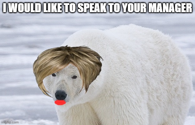 Karen bear |  I WOULD LIKE TO SPEAK TO YOUR MANAGER | image tagged in karen,bear | made w/ Imgflip meme maker