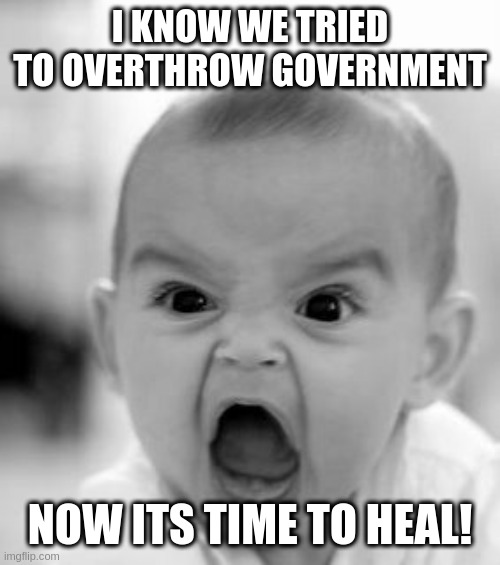 they are seriouly saying this, and complaining abou twitter |  I KNOW WE TRIED TO OVERTHROW GOVERNMENT; NOW ITS TIME TO HEAL! | image tagged in memes,angry baby,rumptards | made w/ Imgflip meme maker