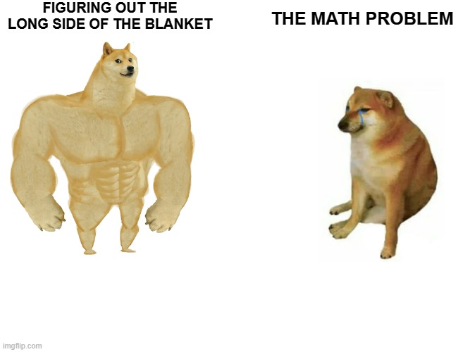 E |  FIGURING OUT THE LONG SIDE OF THE BLANKET; THE MATH PROBLEM | image tagged in memes,buff doge vs cheems | made w/ Imgflip meme maker