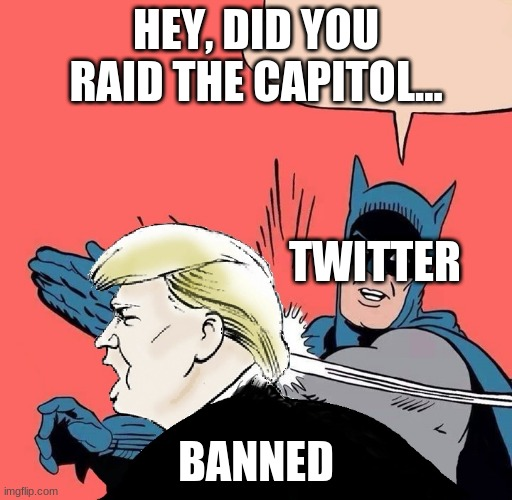 Batman slaps Trump |  HEY, DID YOU RAID THE CAPITOL... TWITTER; BANNED | image tagged in batman slaps trump | made w/ Imgflip meme maker