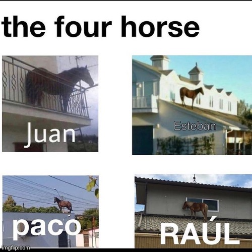 image tagged in juan,paco,raul | made w/ Imgflip meme maker