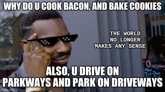 Roll Safe Think About It Meme |  WHY DO U COOK BACON, AND BAKE COOKIES; THE WORLD NO LONGER MAKES ANY SENSE; ALSO, U DRIVE ON PARKWAYS AND PARK ON DRIVEWAYS | image tagged in memes,roll safe think about it | made w/ Imgflip meme maker