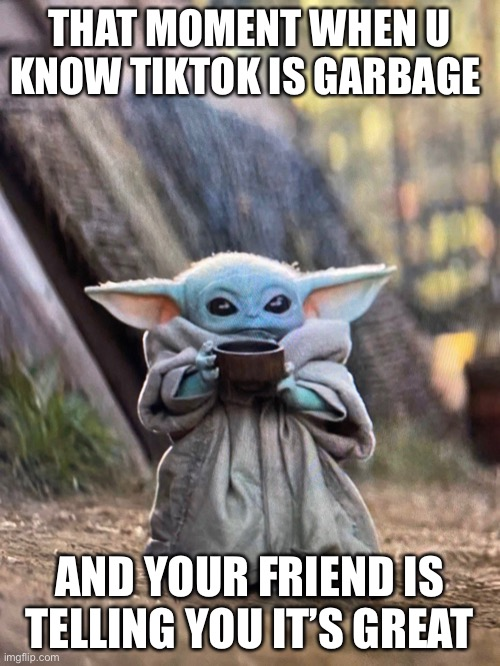 Even baby yoda despises TikTok |  THAT MOMENT WHEN U KNOW TIKTOK IS GARBAGE; AND YOUR FRIEND IS TELLING YOU IT'S GREAT | image tagged in baby yoda tea | made w/ Imgflip meme maker