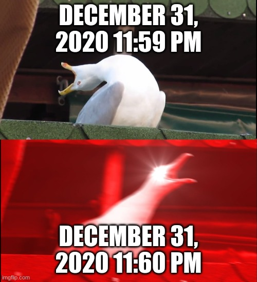 Screaming bird |  DECEMBER 31, 2020 11:59 PM; DECEMBER 31, 2020 11:60 PM | image tagged in screaming bird | made w/ Imgflip meme maker