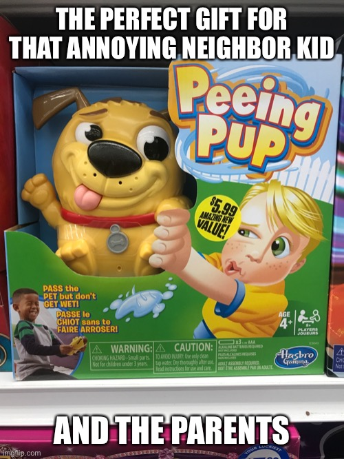 Just quietly tell the kid to fill it with real pee |  THE PERFECT GIFT FOR THAT ANNOYING NEIGHBOR KID; AND THE PARENTS | image tagged in perfect gift,annoying kid,peeing pup | made w/ Imgflip meme maker