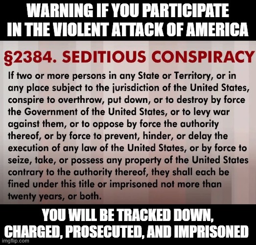 Patriots You Are Not |  WARNING IF YOU PARTICIPATE IN THE VIOLENT ATTACK OF AMERICA; YOU WILL BE TRACKED DOWN, CHARGED, PROSECUTED, AND IMPRISONED | image tagged in sedition,treason,traitors,insurrection,prison,civil war | made w/ Imgflip meme maker