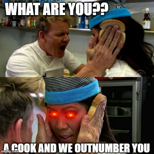 Gordon Ramsay Idiot Sandwich |  WHAT ARE YOU?? A COOK AND WE OUTNUMBER YOU | image tagged in gordon ramsay idiot sandwich | made w/ Imgflip meme maker