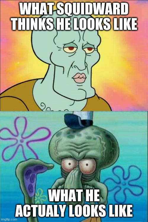 Squidward Meme |  WHAT SQUIDWARD THINKS HE LOOKS LIKE; WHAT HE ACTUALY LOOKS LIKE | image tagged in memes,squidward | made w/ Imgflip meme maker