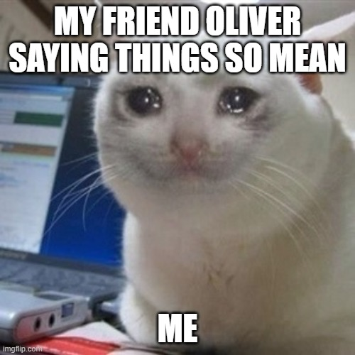 TnT |  MY FRIEND OLIVER SAYING THINGS SO MEAN; ME | image tagged in crying cat | made w/ Imgflip meme maker