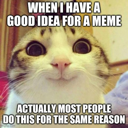 Smiling Cat Meme |  WHEN I HAVE A GOOD IDEA FOR A MEME; ACTUALLY MOST PEOPLE DO THIS FOR THE SAME REASON | image tagged in memes,smiling cat | made w/ Imgflip meme maker