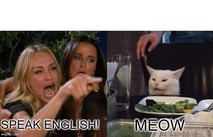 Woman Yelling At Cat Meme |  SPEAK ENGLISH! MEOW | image tagged in memes,woman yelling at cat | made w/ Imgflip meme maker