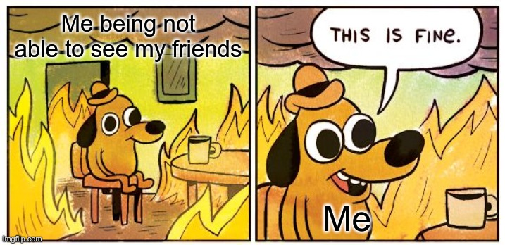 Hope this will end. |  Me being not able to see my friends; Me | image tagged in memes,this is fine | made w/ Imgflip meme maker