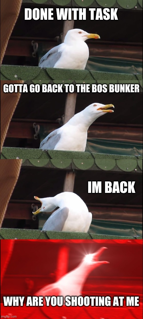 who had this happen to them |  DONE WITH TASK; GOTTA GO BACK TO THE BOS BUNKER; IM BACK; WHY ARE YOU SHOOTING AT ME | image tagged in memes,inhaling seagull | made w/ Imgflip meme maker