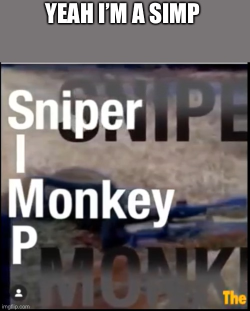 I'm a simp |  YEAH I'M A SIMP | image tagged in simp,sniper,monkeys | made w/ Imgflip meme maker
