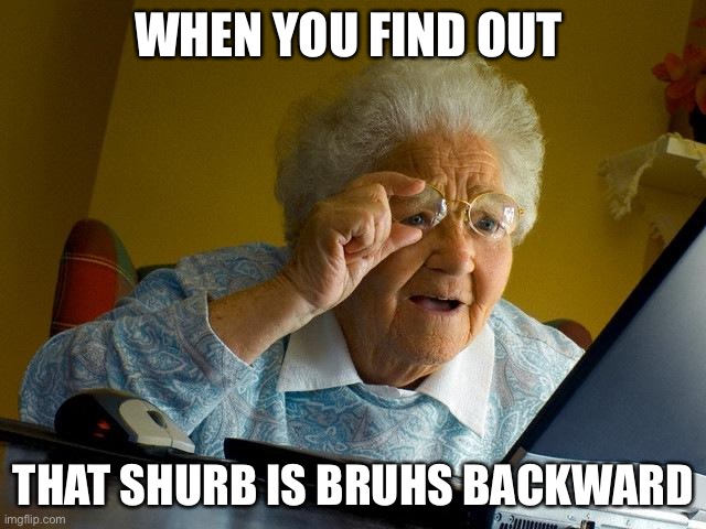 Shurbs are the new bruhs |  WHEN YOU FIND OUT; THAT SHURB IS BRUHS BACKWARD | image tagged in memes,grandma finds the internet | made w/ Imgflip meme maker