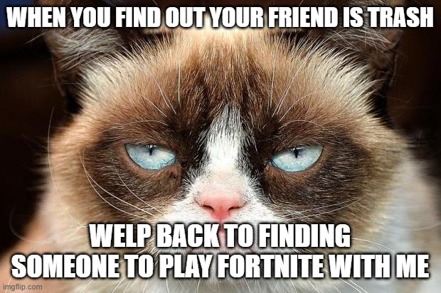 Grumpy Cat Not Amused |  WHEN YOU FIND OUT YOUR FRIEND IS TRASH; WELP BACK TO FINDING SOMEONE TO PLAY FORTNITE WITH ME | image tagged in memes,grumpy cat not amused,grumpy cat | made w/ Imgflip meme maker
