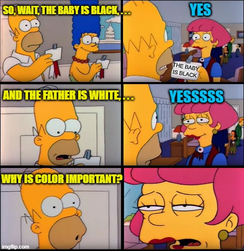 THE BABY IS BLACK SO, WAIT, THE BABY IS BLACK, . . . AND THE FATHER IS WHITE, . . . YESSSSS WHY IS COLOR IMPORTANT? YES | image tagged in vip homer | made w/ Imgflip meme maker