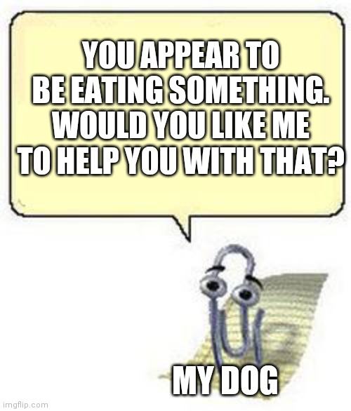 My dog is always helpful |  YOU APPEAR TO BE EATING SOMETHING. WOULD YOU LIKE ME TO HELP YOU WITH THAT? MY DOG | image tagged in clippy blank box | made w/ Imgflip meme maker