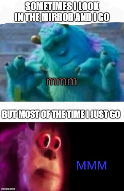 Who can relate?  XD |  SOMETIMES I LOOK IN THE MIRROR AND I GO; BUT MOST OF THE TIME I JUST GO | image tagged in sulley mmm,monsters inc,mirror | made w/ Imgflip meme maker