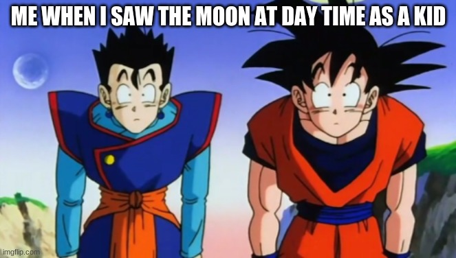 Confusion |  ME WHEN I SAW THE MOON AT DAY TIME AS A KID | image tagged in confused goku and gohan | made w/ Imgflip meme maker