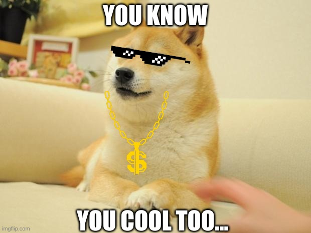 Doge 2 Meme |  YOU KNOW; YOU COOL TOO... | image tagged in memes,doge 2 | made w/ Imgflip meme maker